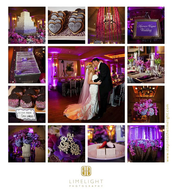 PPhoto collage by Sarasota Photographer Limelight Photography